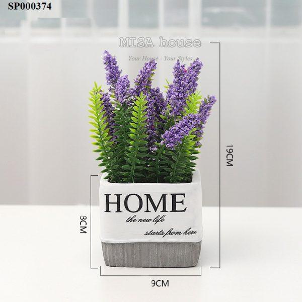 Chậu hoa Home lavender cắm sẵn màu tím