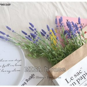 Hoa lavender trang trí nhà đẹp, cửa hàng. quán cafe độc đáo