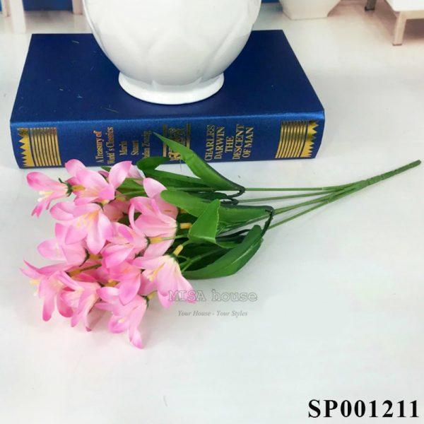 Hoa lan màu hồng nhạt